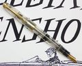 Pelikan-400NN-Demonstrator-Posted.jpg